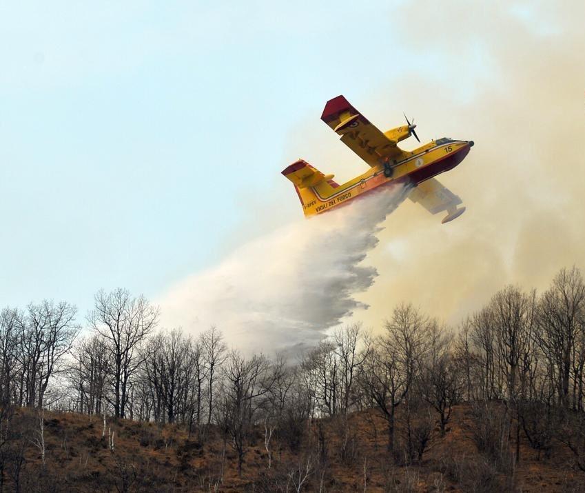 В Италии на 13 млн евро оштрафованы студенты, учинившие лесной пожар