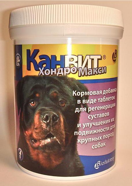 человеческие таблетки для суставов собак