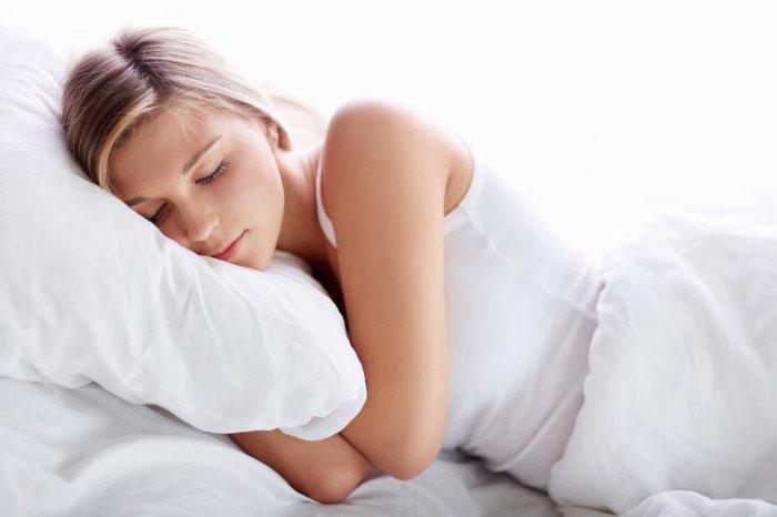 к чему снится енот женщине