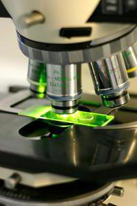 для чего нужен микроскоп