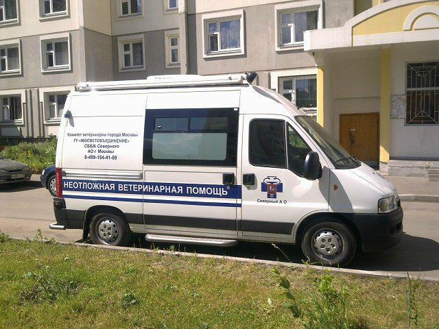 государственная ветеринарная клиника в москве сао