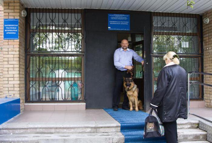 государственная ветеринарная клиника в москве