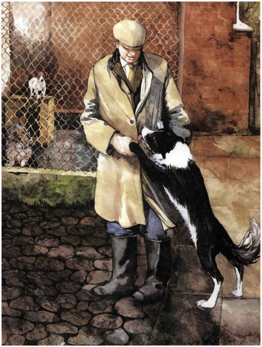 джеймс хэрриот записки ветеринара