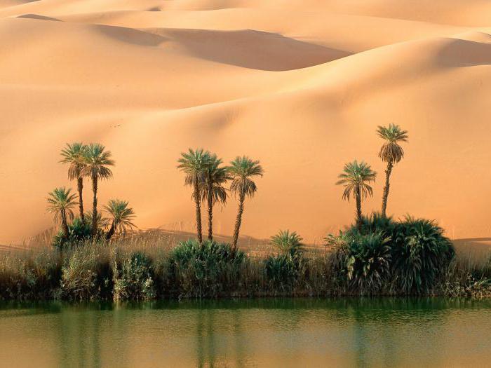 государство ливия фото