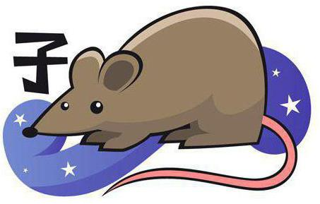 крыса и крыса совместимость в любви