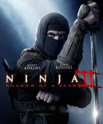 список фильмов о ниндзя