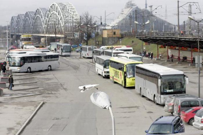 автобус санкт петербург рига