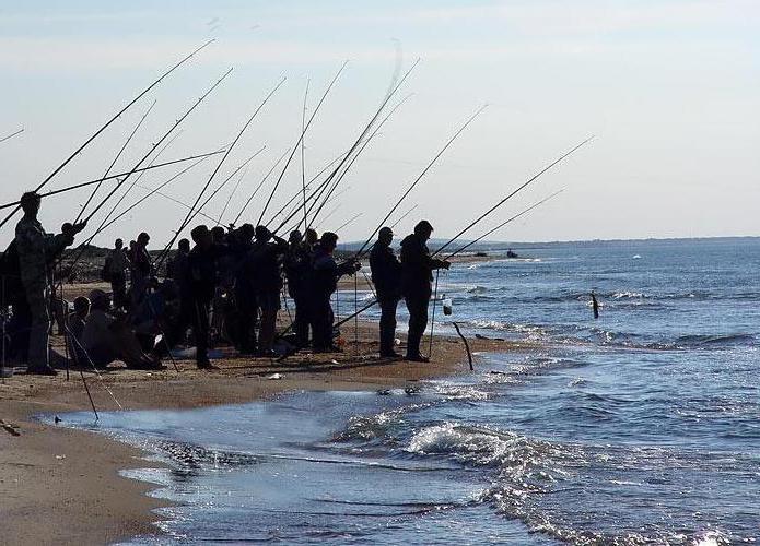 рыбалка в сочи на море с берега видео