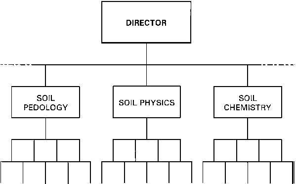 характеристика формальной организации