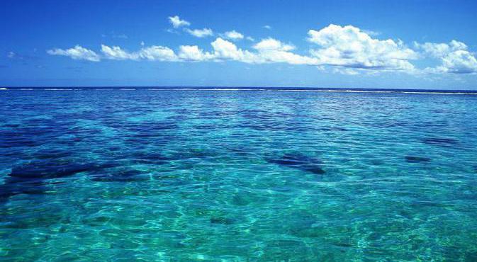 к чему снится чистый океан