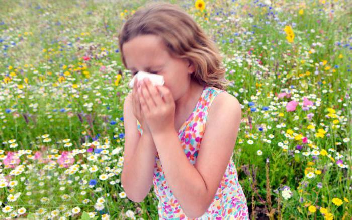 сдать анализы на аллергены