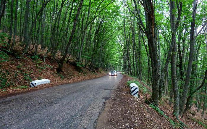 дорога москва крым