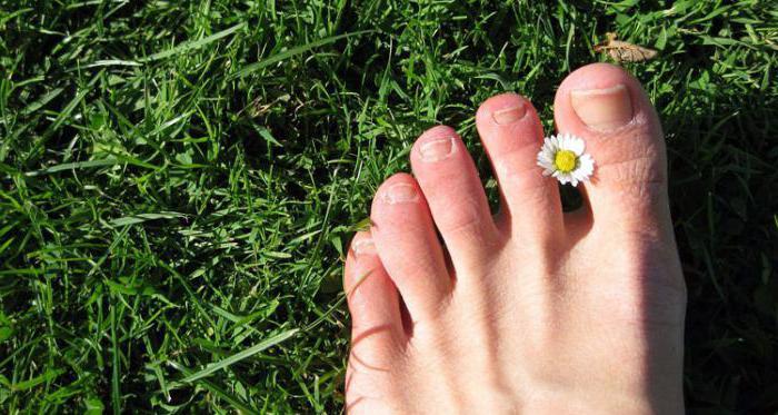 Недорогие средства от грибка ногтей на ногах