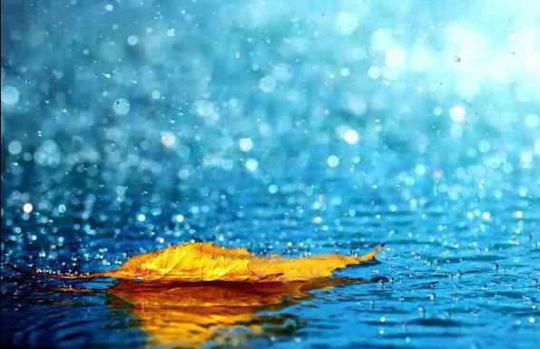 сонник попасть под дождь во сне квартиры микрорайоне Кошелев