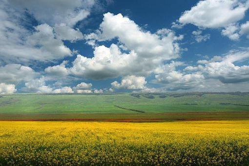 города саратовской области