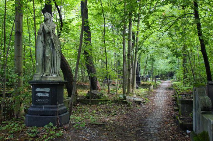 Смоленское лютеранское кладбище фото