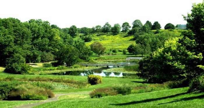 дендрологические ботанические парки