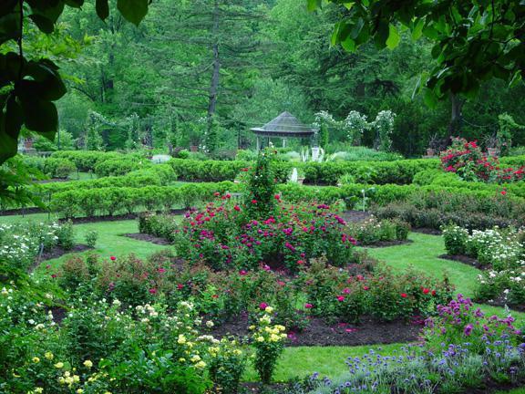дендрологические парки и ботанические сады