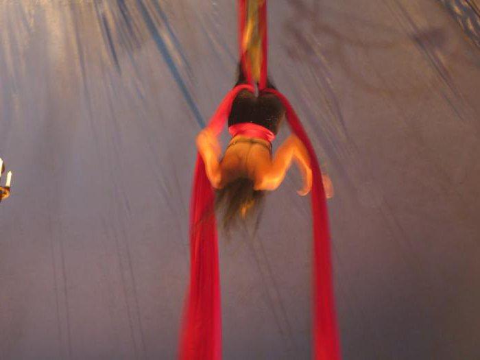 сонник цирк приснился