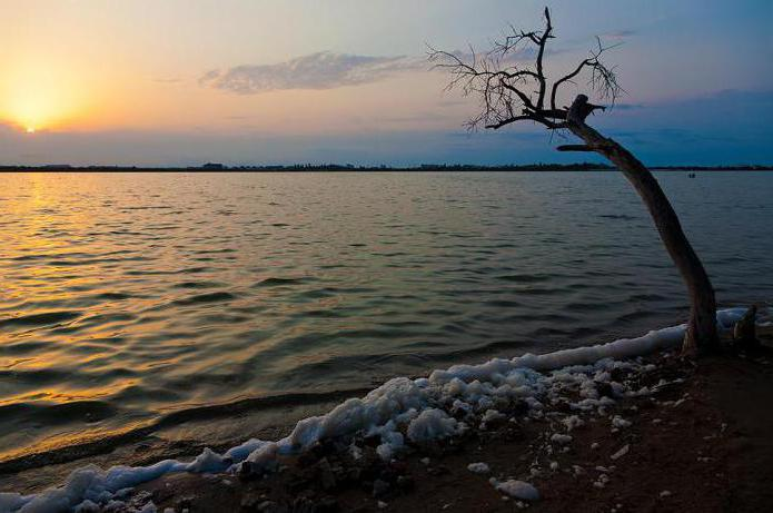 как добраться до мойнакского озера
