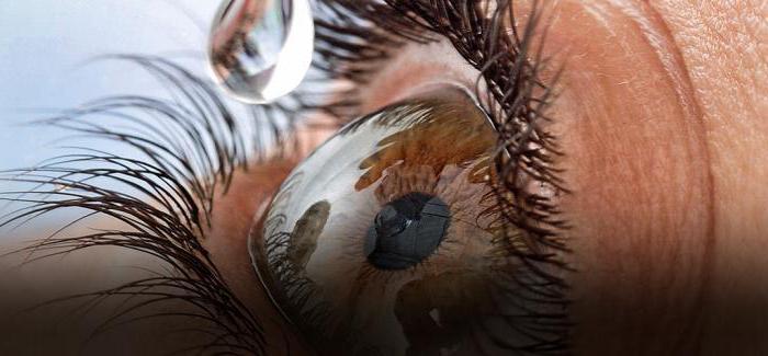 Инокаин глазные капли