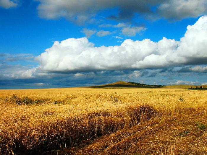 проблемы сельского хозяйства казахстана