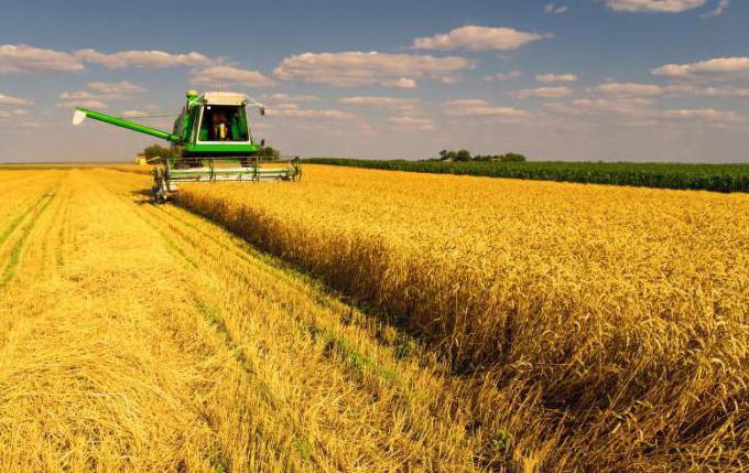 сельское хозяйство казахстана кратко