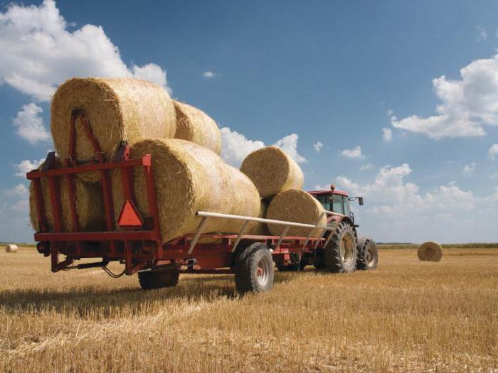 сельское хозяйство республики казахстан