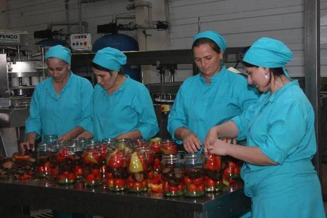 производство овощных консервов
