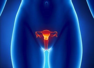 анализ на впч папилломавирус у женщин