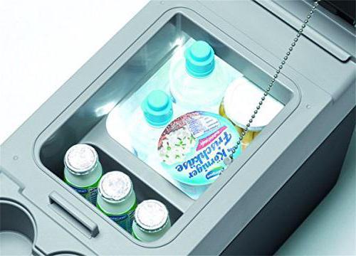 лучшие автохолодильники
