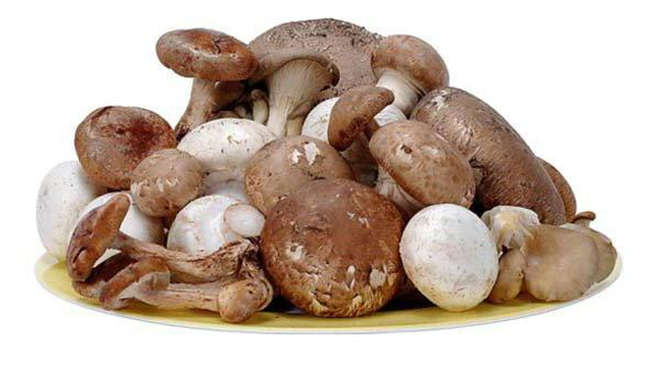 сколько калорий в грибах