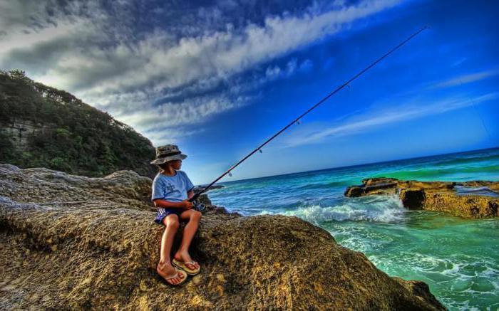 на что лучше всего ловить на море