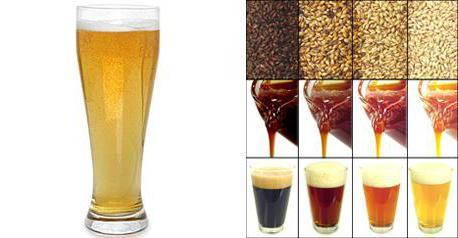 рецепты пивоварни бавария