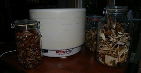 сушка для грибов и фруктов