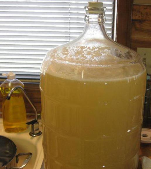 Как сделать медовуху из старого меда