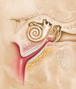 воспаление труб
