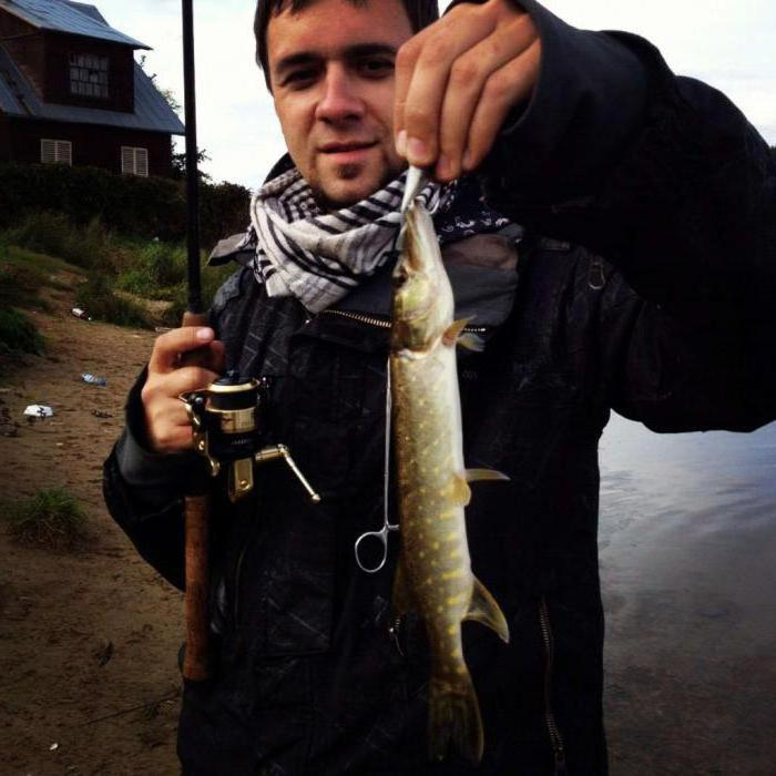сейчас рыбалка в конаково