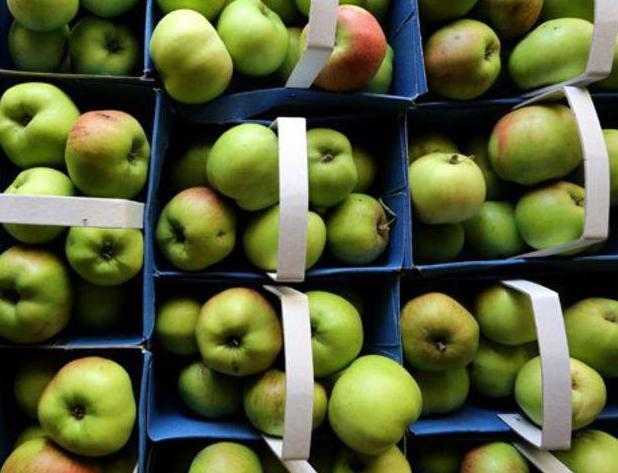 корнуэльский яблочный пирог рецепт