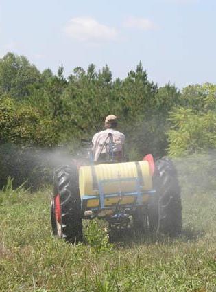 борьба с сорняками на участке