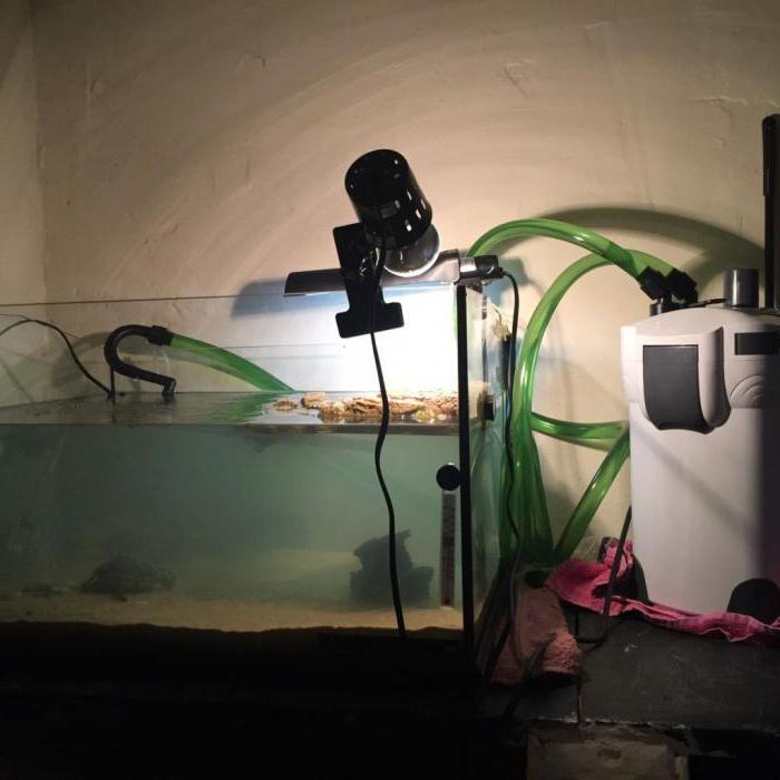 ультрафиолетовый обогреватель для дома