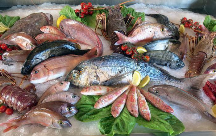 в какой рыбе больше витаминов