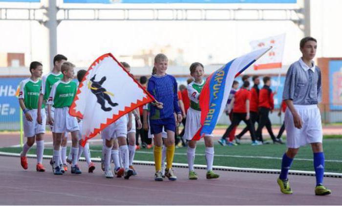 стадион труд подольск секции для детей