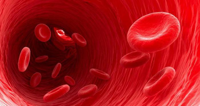 кровь аст и алт повышены