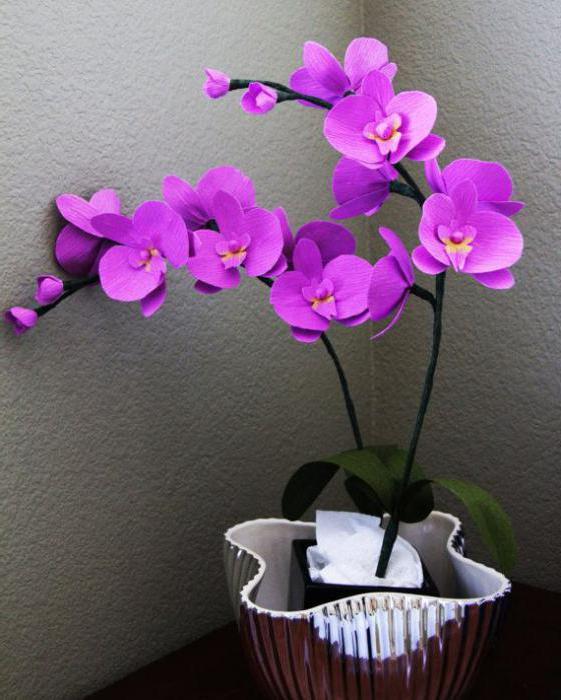 Как сделать орхидеи из а 434