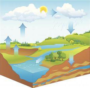 Глубина залегания грунтовых вод в Московской области