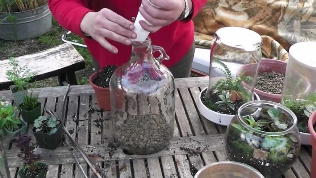 Создание флорариума