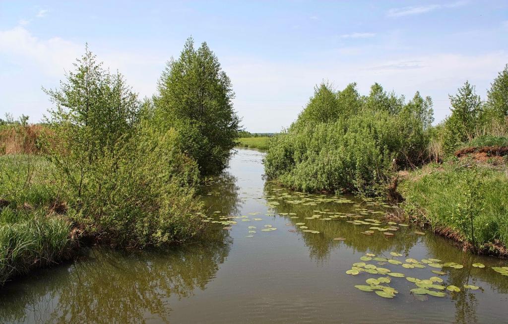 река Сивинь Мордовия