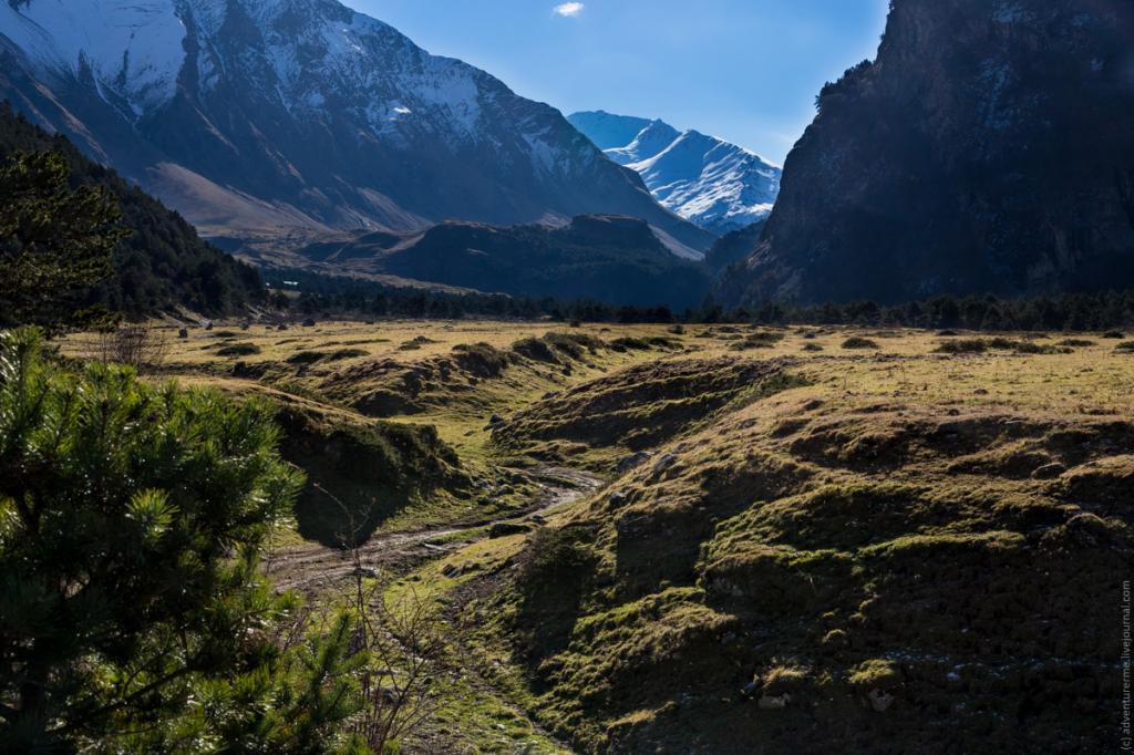 Природные ландшафты заповедной зоны