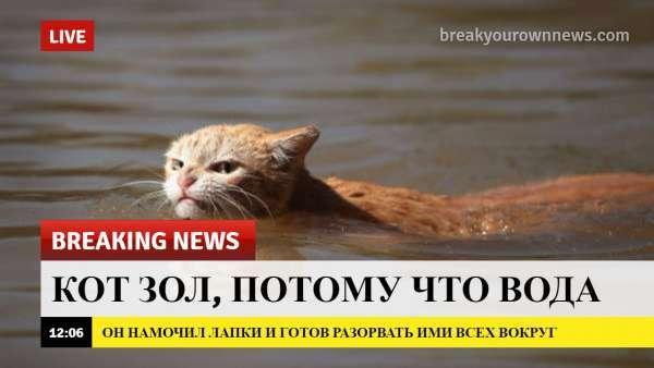 Новости сегодня